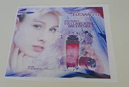 Bandera Tela banner inprimatua 1,6 m (5 oinak) eco disolbatzaile inprimagailua WER-ES160 4