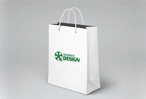 Paper-Bag-inprimatzeko-lagin-inprimatutako-by-A1-tamaina-UV-printer-Wer-EP6090UV